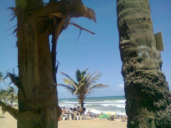 Pousada Praia do Flamengo Salvador da Bahia : coqueiros ceu azul e praia limpa