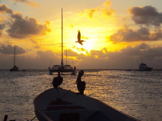 Posada El Botuto: Sunset in the beach next to El Botuto