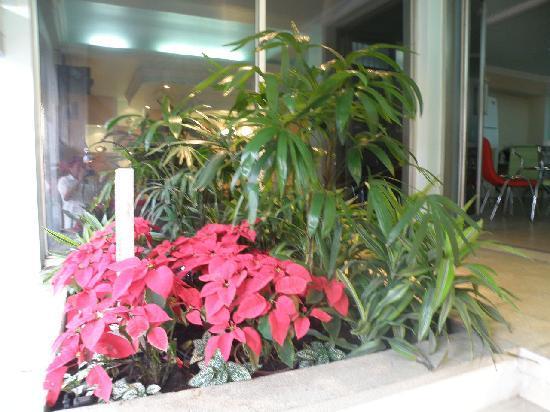 Hotel Eskalima: Entrada jardin
