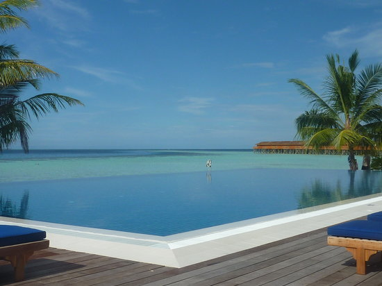 Vilamendhoo Island Resort & Spa : the infinity pool by sunset bar