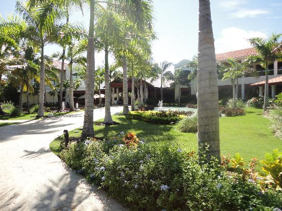 Dreams Palm Beach Punta Cana: jardines