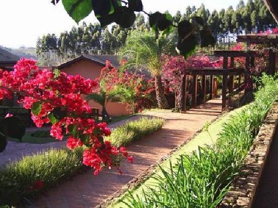 Amparo, SP: Jardins