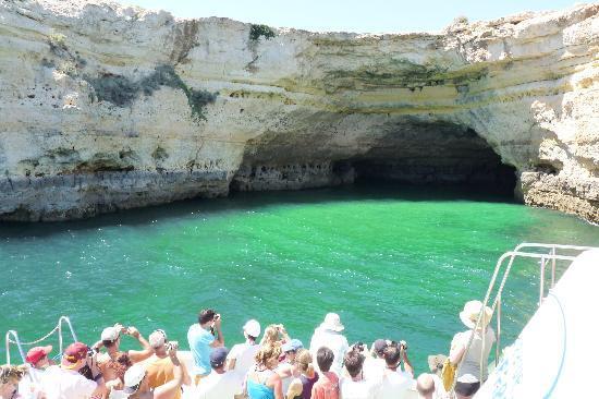 Algarve Seafaris : algarve trips