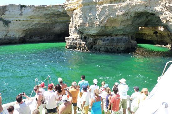 Algarve Seafaris : faro tours