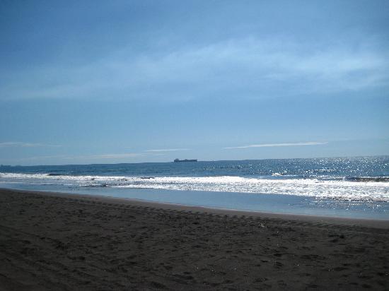 Hotel Soleil Pacifico: black sand beach