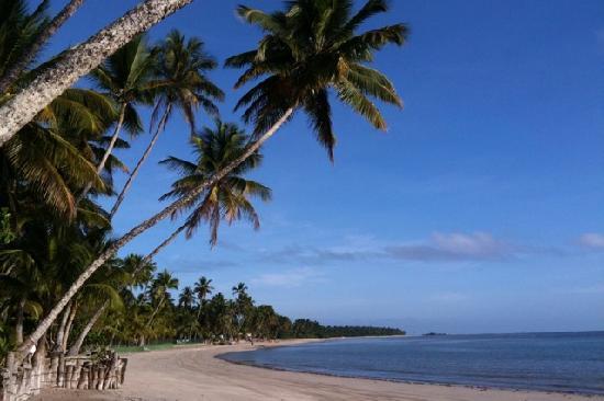 Pousada Coqueiro do Caita: La spiaggia