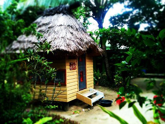 Robinson Crusoe Island Resort: The single bures
