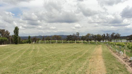 Ridgemill Estate: Cabins in the Vineyard: Simply beautiful