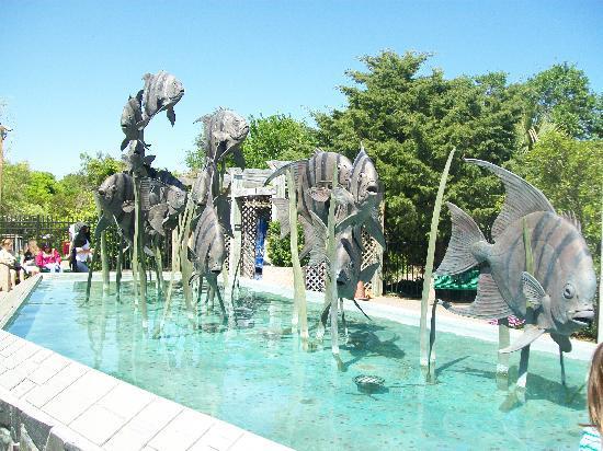 Oceaneer Motel: there pool