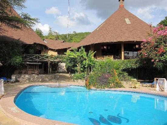 Mara Sopa Lodge: swimming pool