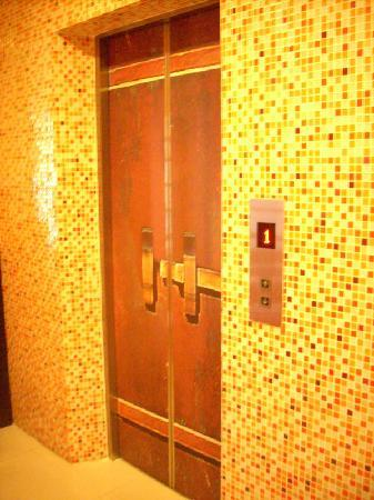 DS67 Suites: Even the elevator doors are different 3