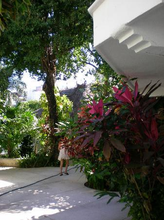 Tropical Escape Hotel: More grounds
