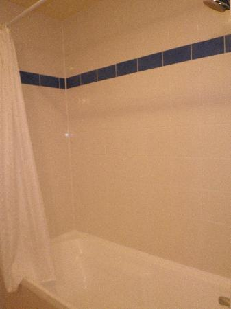 Jet Park Hotel Rotorua: shower in bath