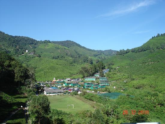 Cameron Highlands, Malasia: Boh Teh Centre @ Sg Palas - worth the time and it's challenging too : )