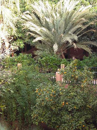 Hotel Ouarzazate Le Tichka : courtyard