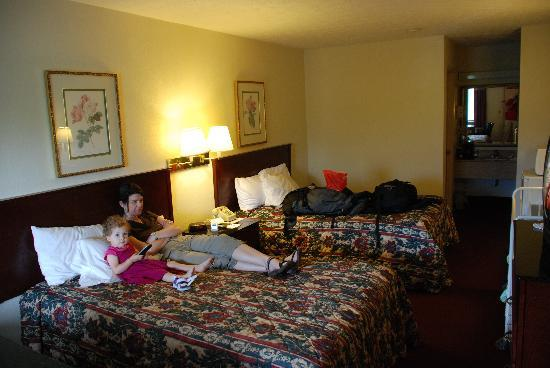 Red Roof Inn Edgewood : room