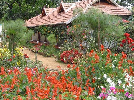 Rose Gardens Homestay