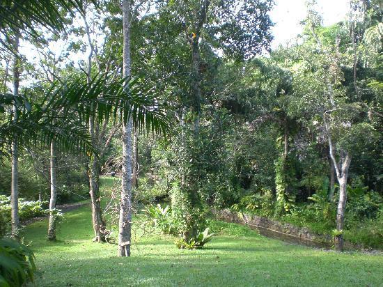 Apa Villa Illuketia: The gardens