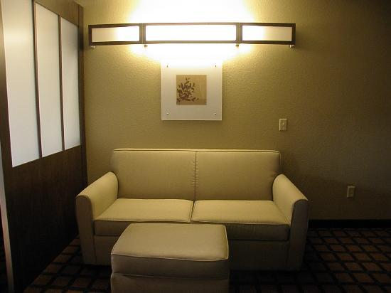 Microtel Inn & Suites by Wyndham Macon: Queen Suite pullout sofa - quite comfy!