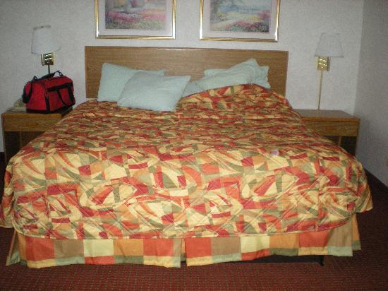 Super 8 Niagara Falls/Buffalo Area: King size bed in rm 203