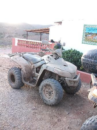 Hugo's Quad Bike Adventure : The state of the quads when you get back!