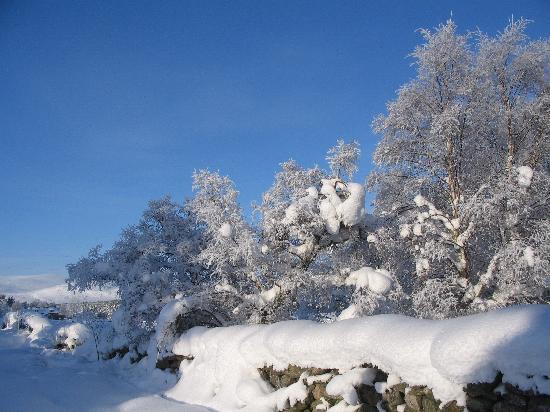 Glengarry B&B: Drumguish deep snow