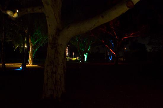 Chapel Farm Getaways: Night Lights
