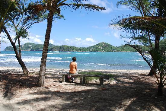 Bay Gardens Beach Resort: Watching the waves at Fort Rodney