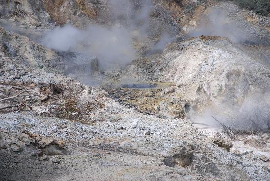 Bay Gardens Beach Resort: Volcano and sulphur springs