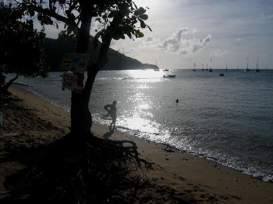 Bay Gardens Beach Resort: Late afternoon on the beach