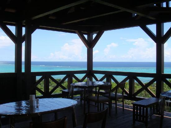 Sea Forest: レストランのテラス席からの眺望です