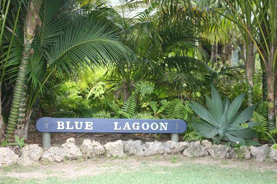 Blue Lagoon Lodge