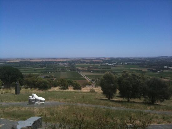 Vine Inn Barossa: amazing views