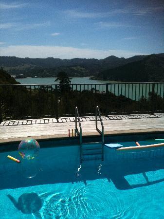 Waimanu Lodge Whangaroa Northland: Just a bit of the view!