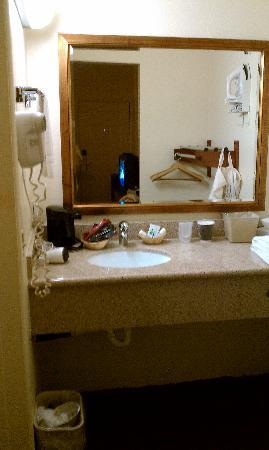 Ocean Palms Motel: The bathroom sink