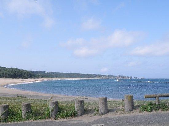 ฮะชิโนะเฮะ, ญี่ปุ่น: 種差海岸の白浜