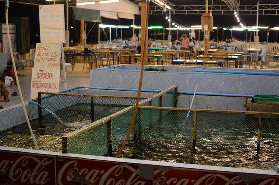 Sang Thai Seafood