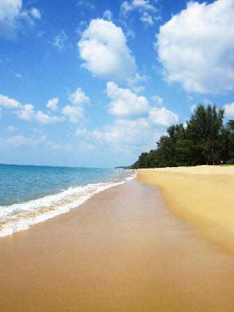 Renaissance Phuket Resort & Spa: the beach front hotel