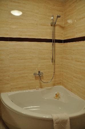 1231 Hotel : bathtub