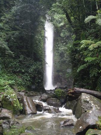 Harolds Mansion: Casaroro Falls