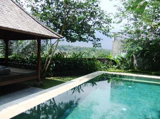 The Samaya Bali Ubud : View from our villa
