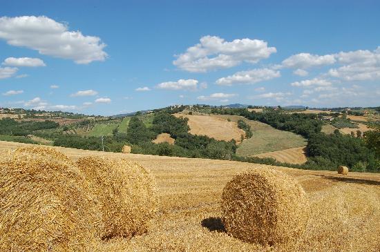 Agriturismo Casale dei Frontini照片