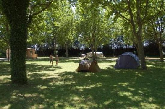 Camping Intercommunal de la Durance: Espace campeurs