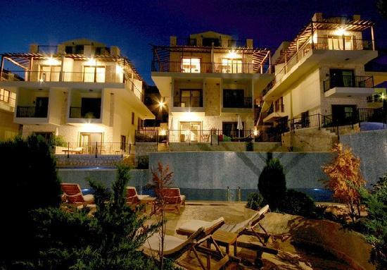 The Elvina Apartments By Night