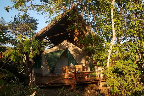 Bua River Lodge: Island accommodation