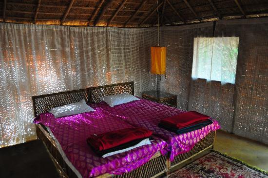 Dwarka Eco Beach Resort: Our hut room