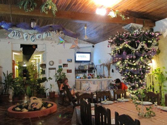 Posada Macondo: Buon Natale
