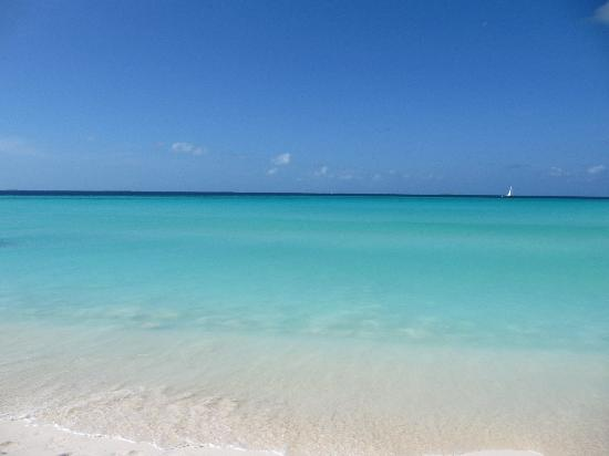 Posada Macondo: Il mare è talmente bello che sempre finto