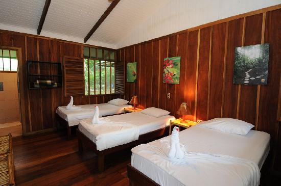 Mawamba Lodge Tortuguero standard room