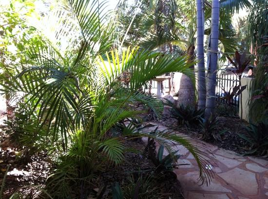 Delilahs Bed and Breakfast: gardens